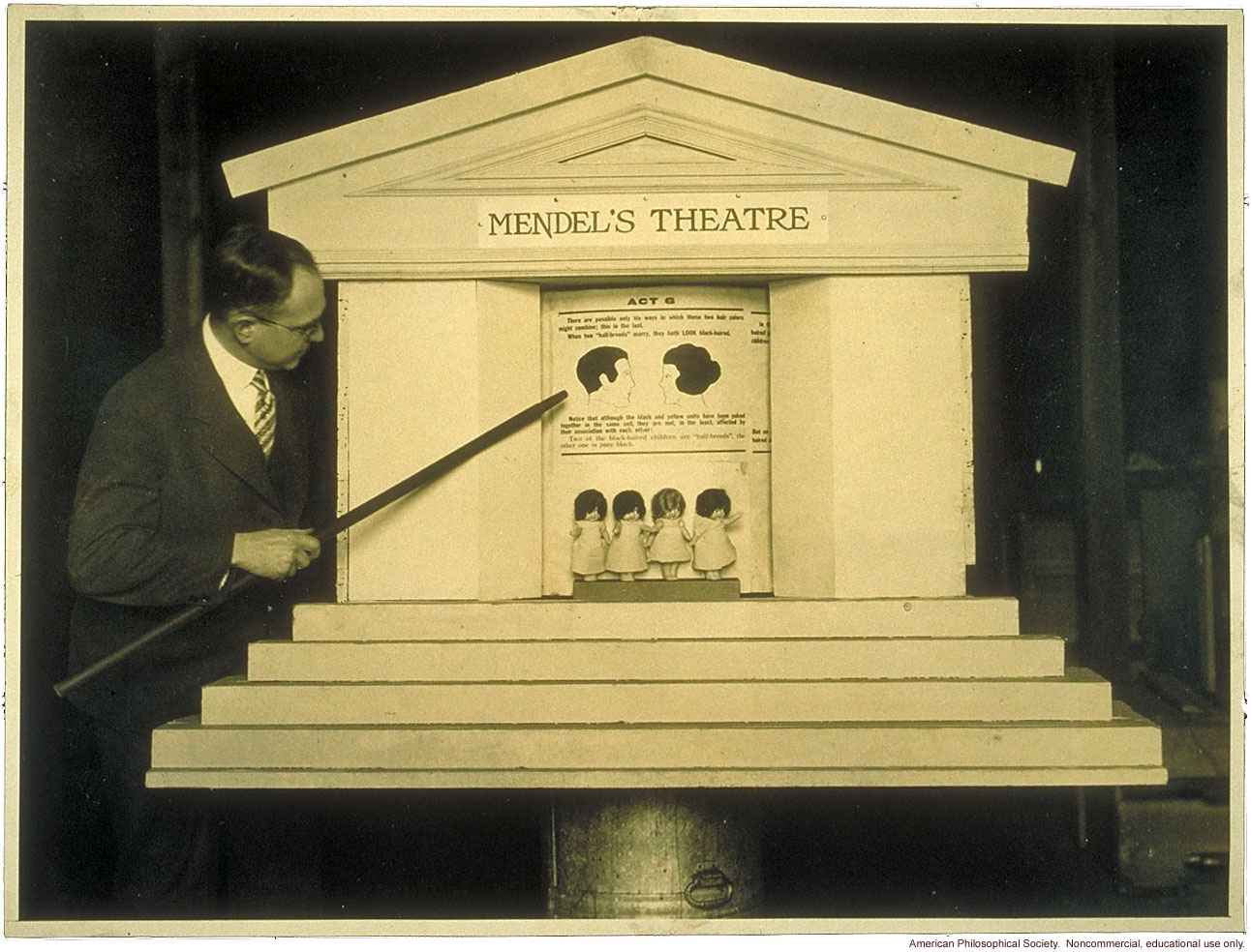 &quote;Mendel's Theatre&quote; showing inheritance of hair color, demonstrated by Leon Fradley Whitney
