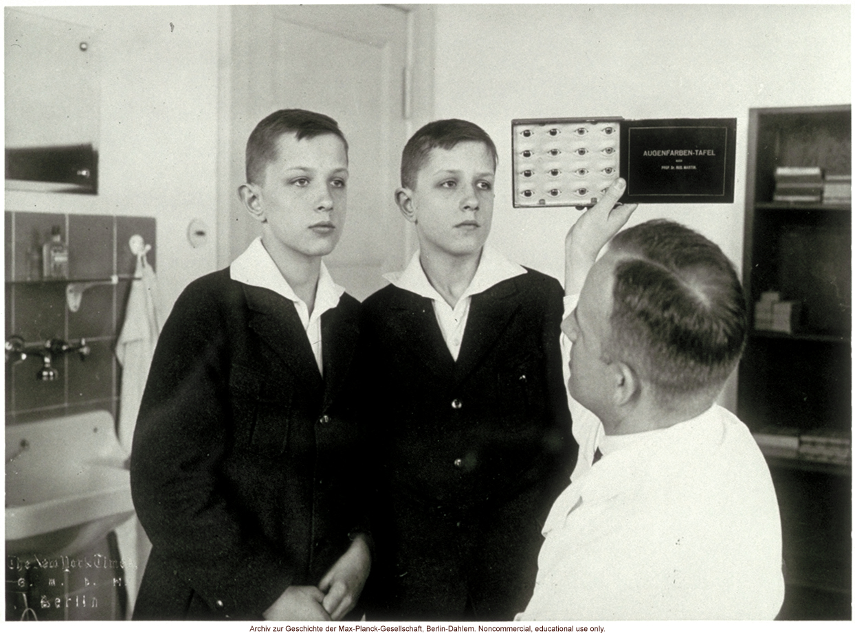 12-year-old male twins undergoing anthropometric study by Otmar Freiherr von Verschuer
