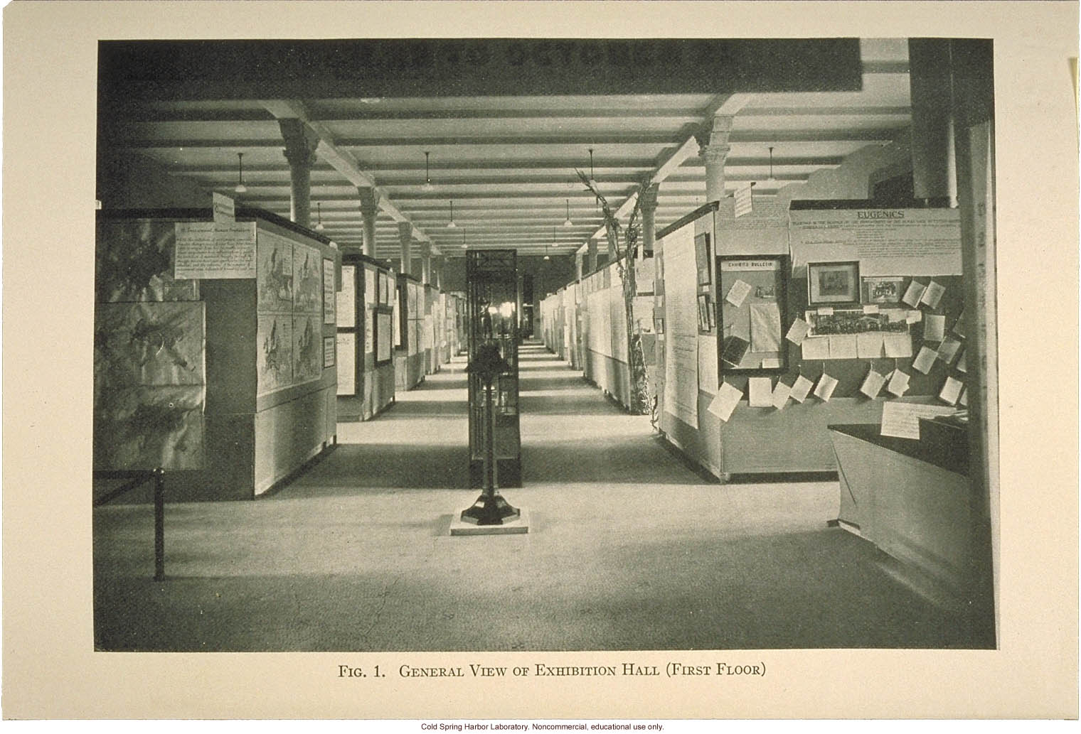 &quote;General view of exhibition hall (first floor)&quote;