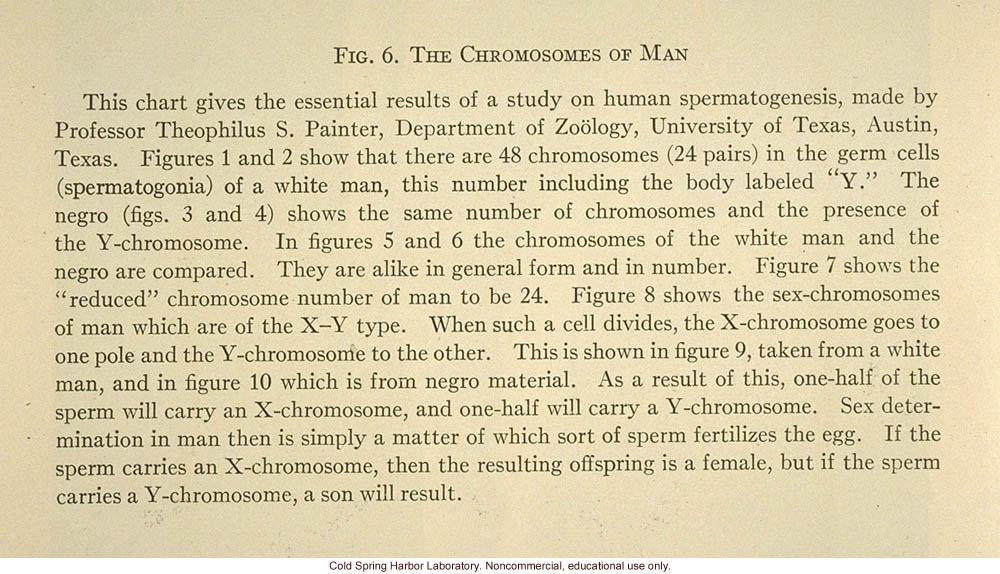 &quote;Fig. 6. The chromosomes of man&quote;