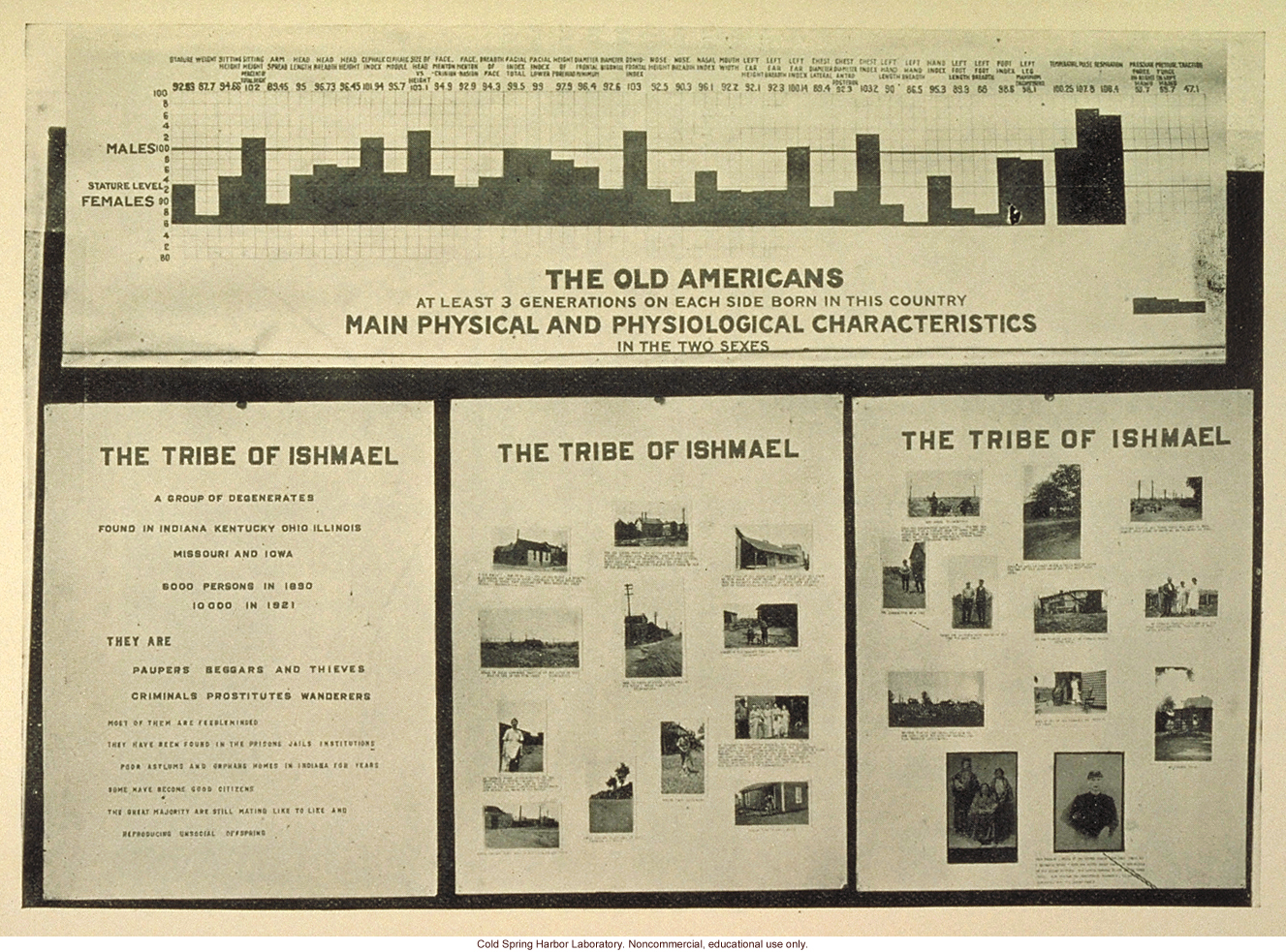 &quote;The Old Americans, main physical and physiological characteristics of the Tribe of Ishmael&quote;