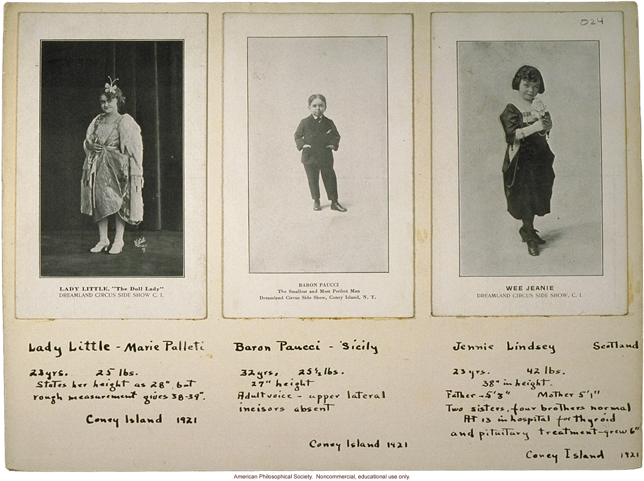 Three midgets, with notes, circus acts