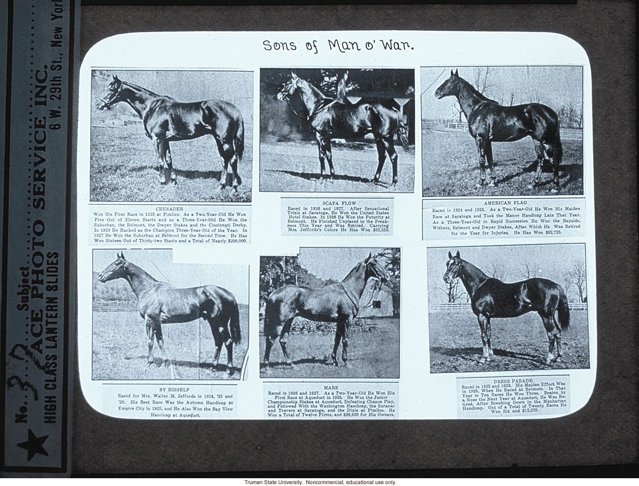 &quote;Sons of Man O' War,&quote; about Horse Genetics