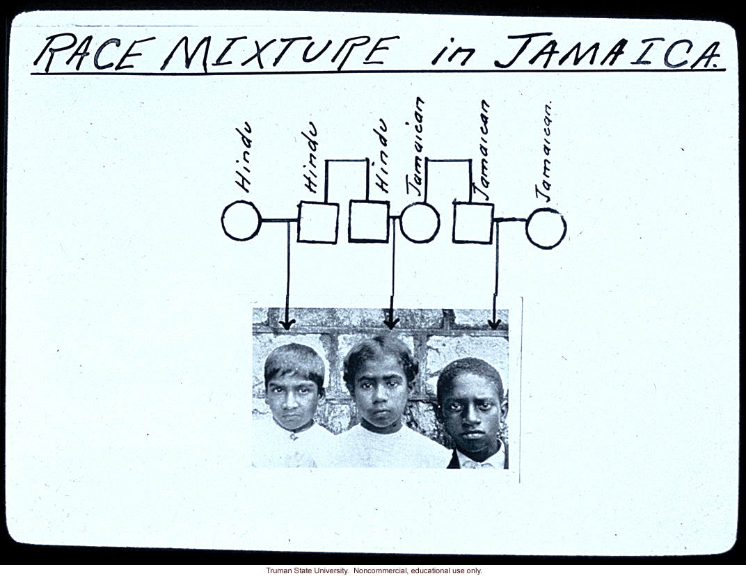 &quote;Race mixture in Jamaica&quote;