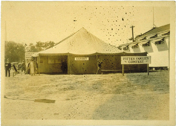 Fitter Families exhibit/exam tent, Eastern States Exposition, Springfield, Massachusetts