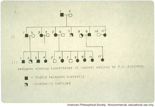 Student study of inheritance of musical ability, including pedigree
