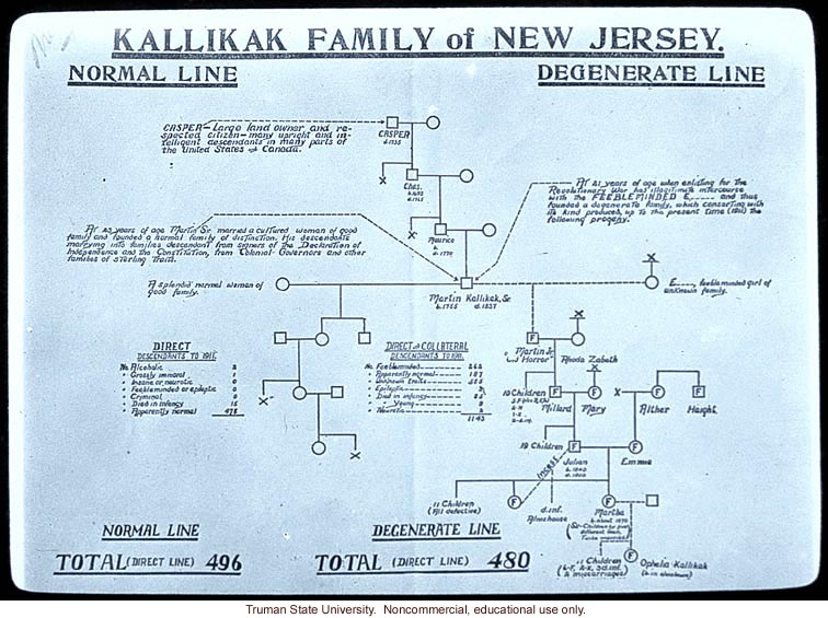 &quote;Kallikak family of New Jersey -- normal line vs. degenerate line&quote;