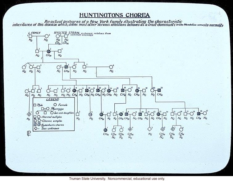 Huntington's chorea pedigree