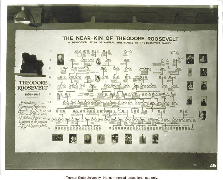 Pedigree exhibit: &quote;The near-kin of Theodore Roosevelt,&quote; 3rd International Eugenics Conference