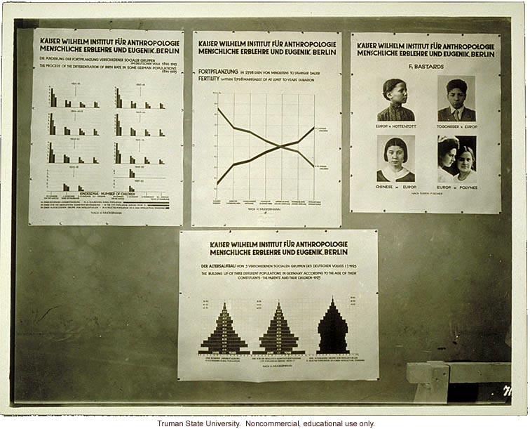 Kaiser Wilhelm Institute exhibit on population studies in Germany, 3rd International Eugenics Conference