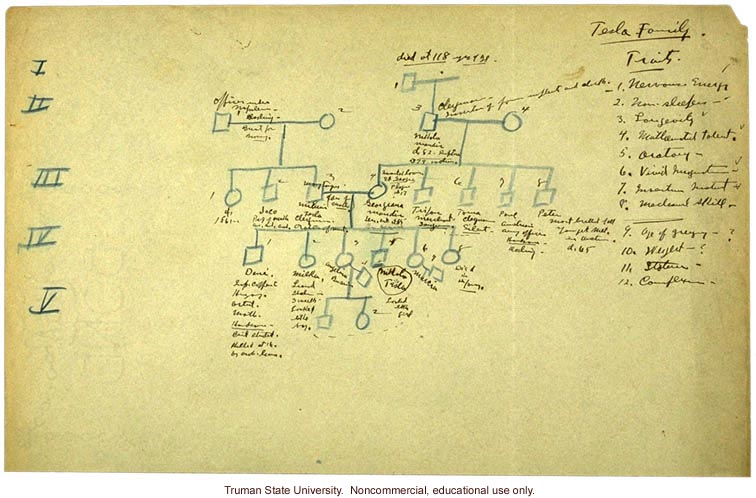 H. Laughlin's hand-written pedigree of the Tesla family
