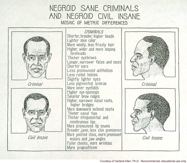 &quote;Negroid sane criminals and Negroid civil insane, mosaic of metric differences&quote;