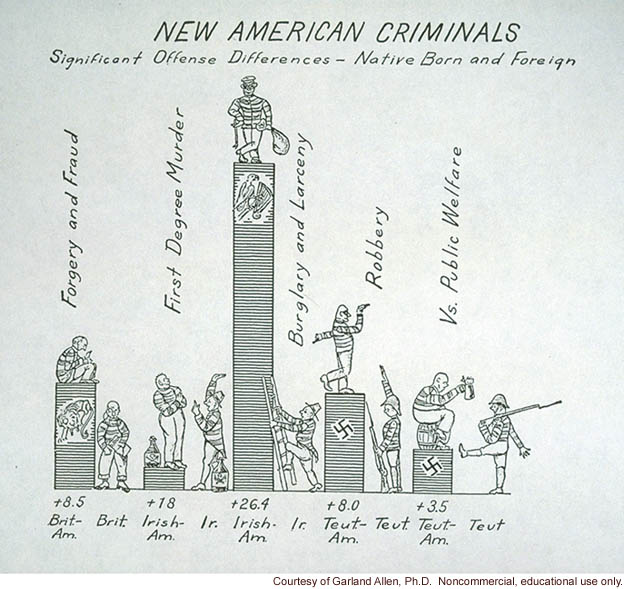 &quote;New American criminals, significant offense differences -- native born and foreign&quote;