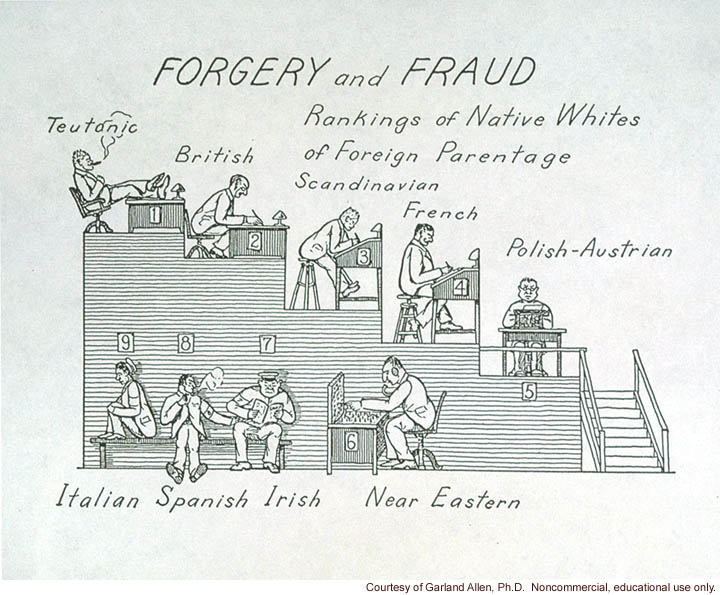 &quote;Forgery and fraud, rankings of native whites of foreign parentage&quote;