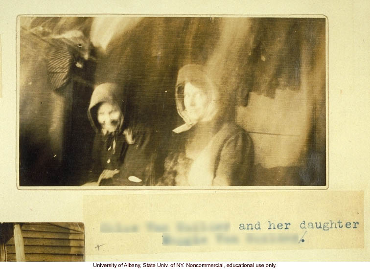 The Nam Family, by A. Estabrook and C. Davenport, pedigree of V87, V127, V155 (p. 21) and corresponding field portraits from back of Estabrook's copy