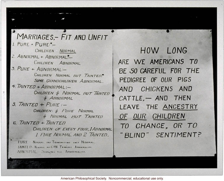 &quote;Marriages - Fit and Unfit&quote;