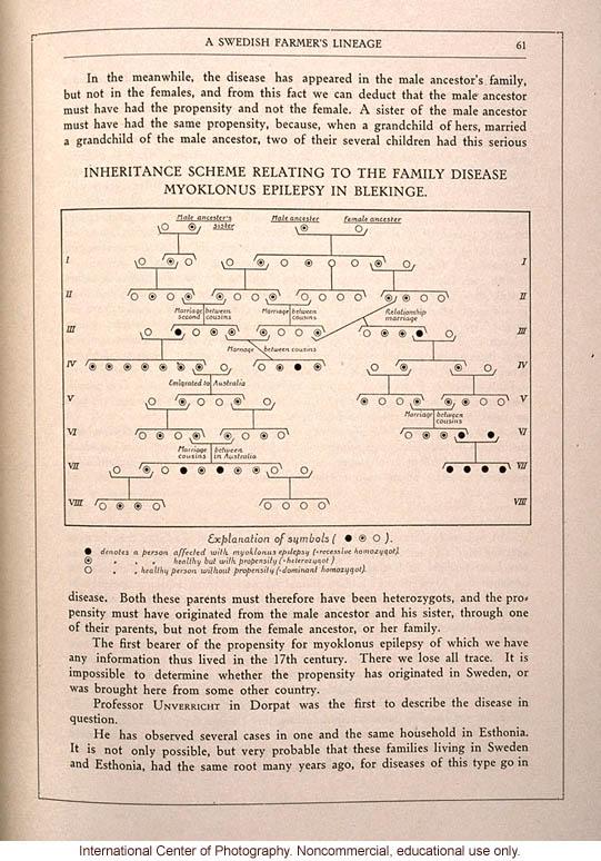<i>The Swedish Nation</i>, pedigree of epilepsy in Swedish farmer lineage