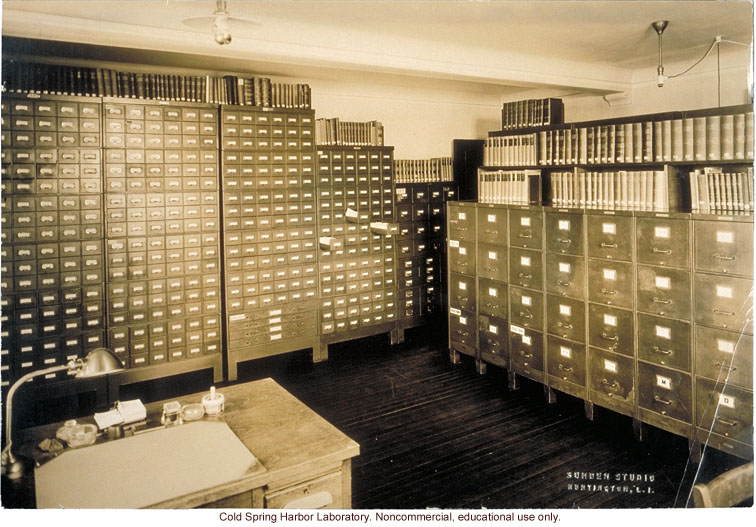 Eugenics Record Office, archives room with card index on far wall and field worker files on right