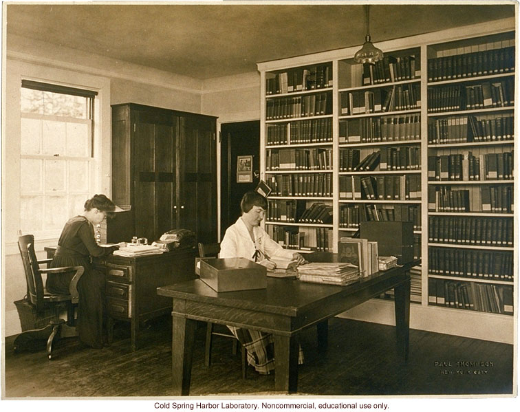 Eugenics Record Office, interior with workers