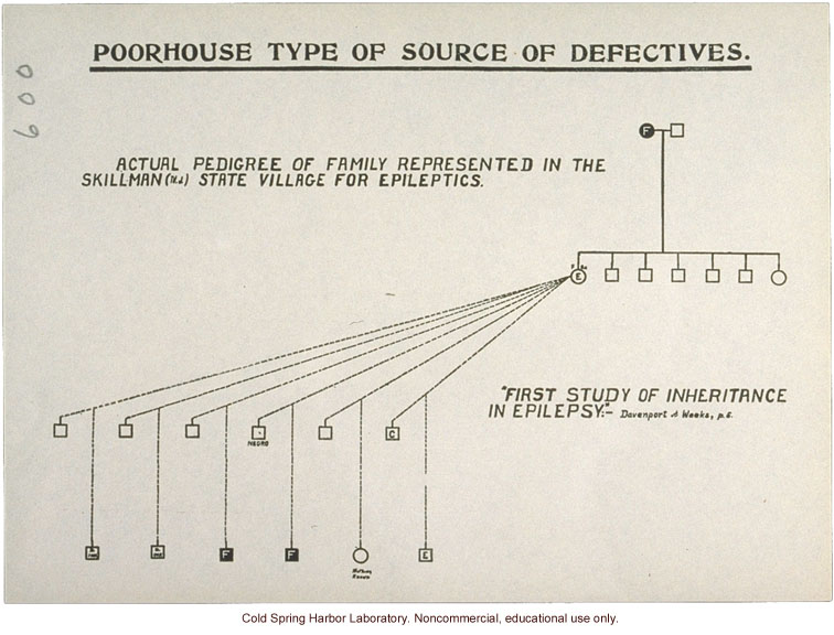 &quote;Poorhouse Type of Source of Defectives,&quote; pedigree of epilepsy and feeblemindedness (C. Davenport and D. Weeks)