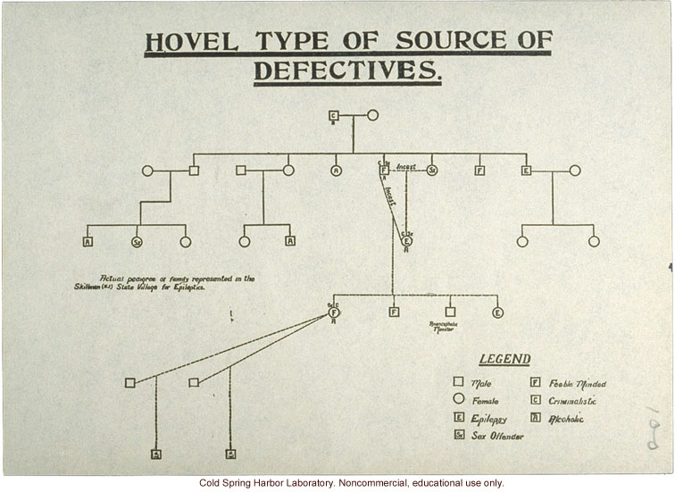 &quote;Hovel Type of Source of Defectives,&quote; pedigree of epilepsy and feeblemindedness
