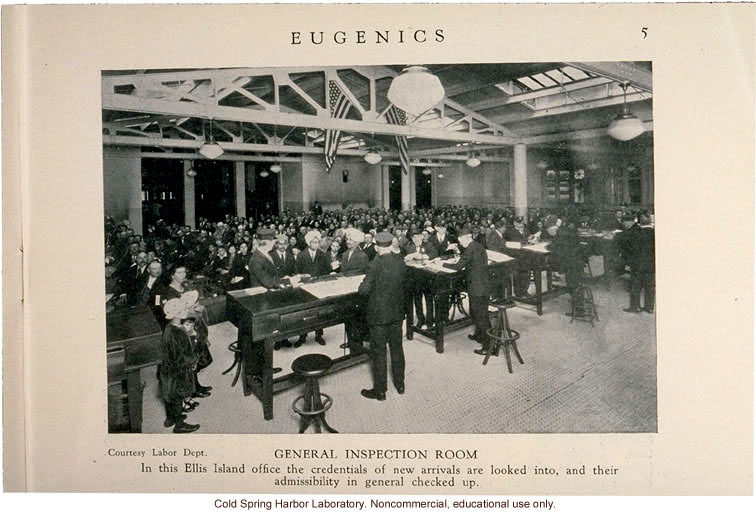 &quote;General Inspection Room Ellis Island,&quote; Eugenics: A Journal of Race Betterment (vol II:8)
