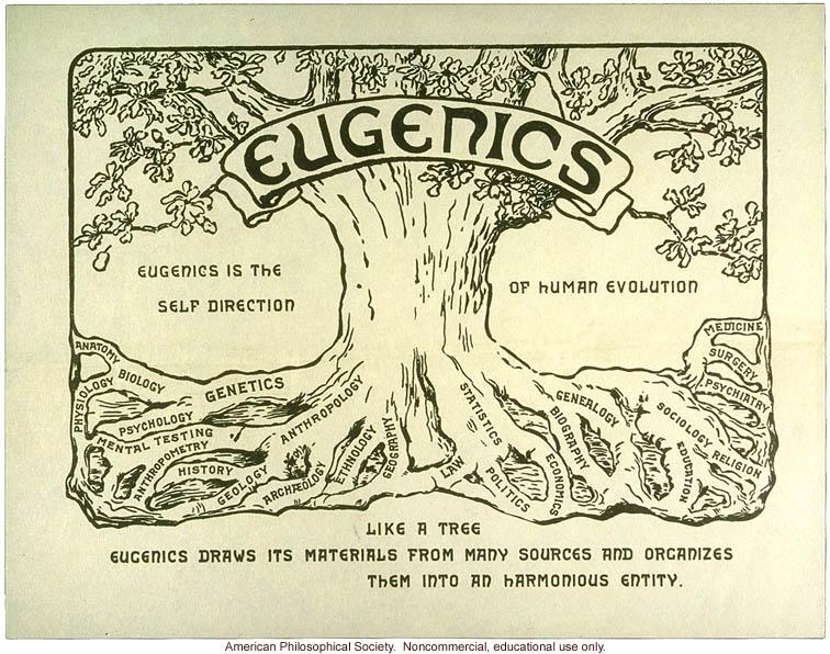 Eugenics tree logo