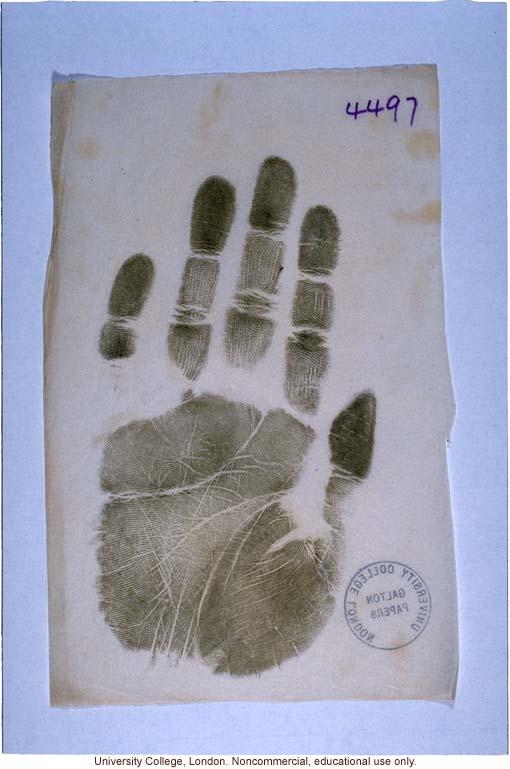 Handprint taken by Francis Galton
