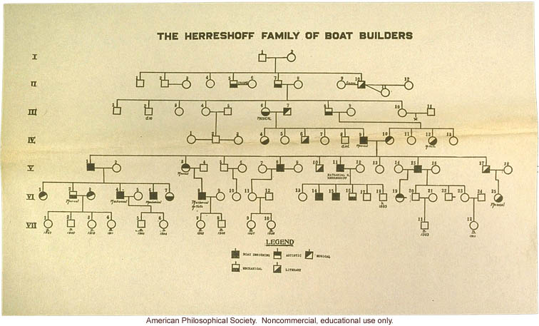 Boat builder pedigree