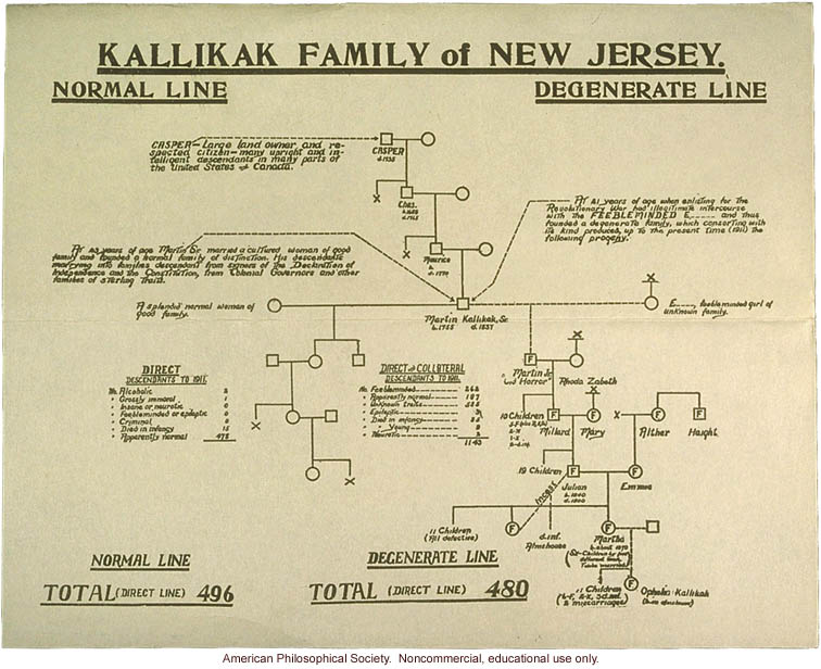 Kallikak family pedigree