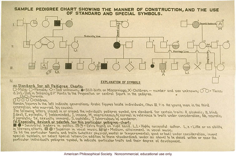 &quote;Sample pedigree chart showing the manner of construction&quote;
