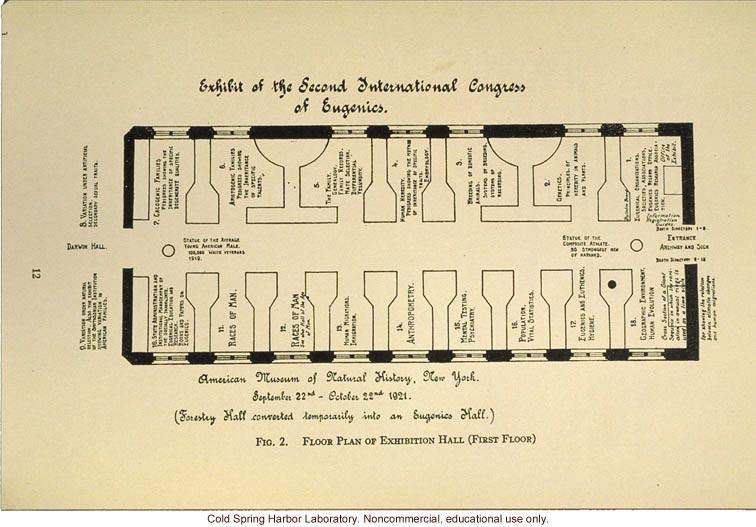 &quote;Exhibit of the Second International Congress of Eugenics,&quote; floor plans of exhibition hall