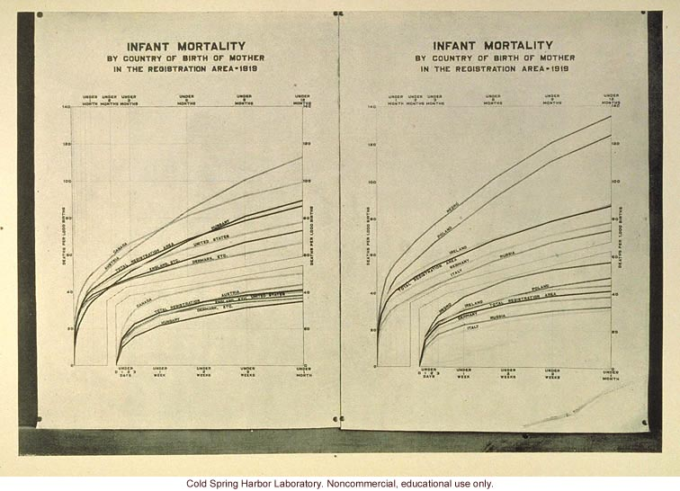 Infant mortality rates in the US by nationality of mother
