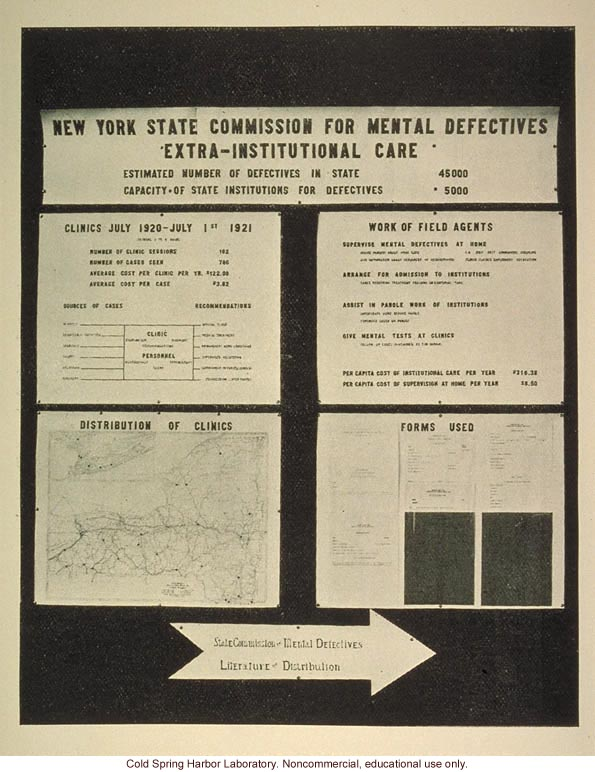 &quote;New York State Commission for mental defectives, extra-institutional care&quote;