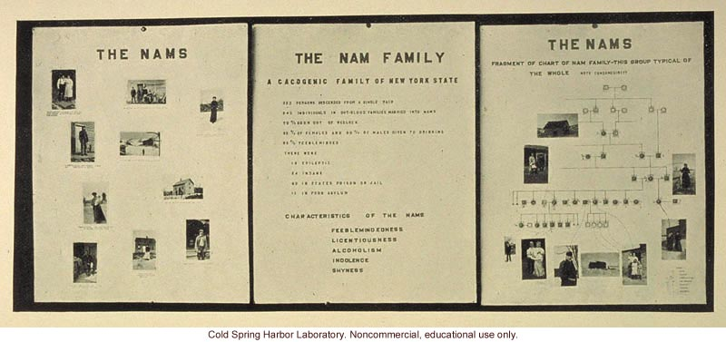 &quote;The Nam family,&quote; Fig. 45