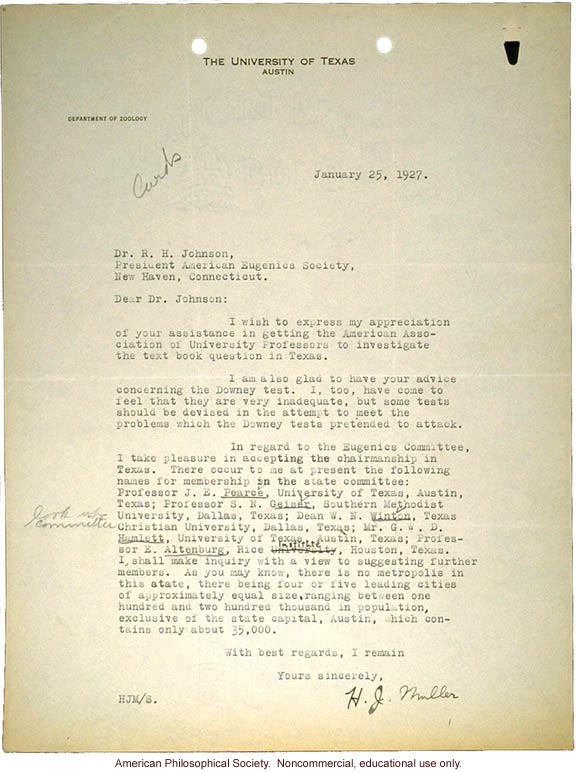 H. Muller letter to R. Johnson accepting Texas chairmanship of American Eugenics Society