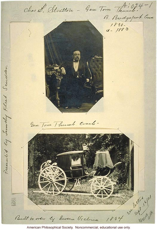 Tom Thumb and coach, which Timothy Fleet Scudder sold to the president of Dreamland Circus &quote;for a fair price.&quote;