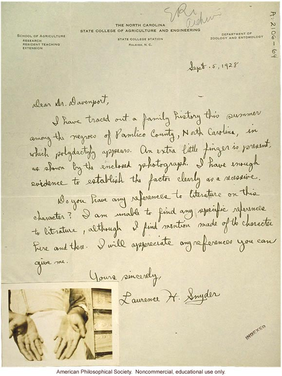 L. Snyder letter to C. Davenport, about polydactyly