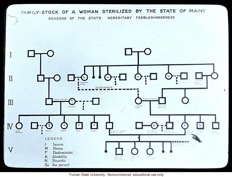 &quote;Family-stock of a woman sterilized by the state of Maine&quote;