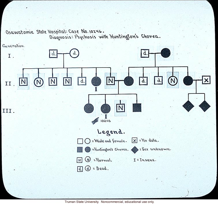 Pedigree:&quote; Osawatomie State Hospital: case no. 10246. Diagnosis: psychosis with Huntington's chorea&quote;