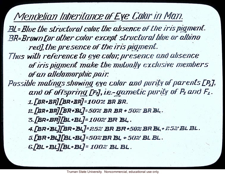 &quote;Mendelian inheritance of eye color in man&quote;